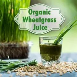 Wheatgrass Juice 500ml- Immunity Booster & Blood Purifier