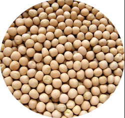 White Peas 1 Kg