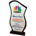 Angad Personalized Gift Shop Annual Performance Acrylic Trophies