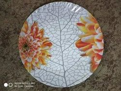 Home Use Dinner Plates