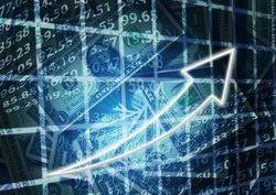 股票投资者数据库