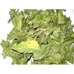 Neem Dry Leaves