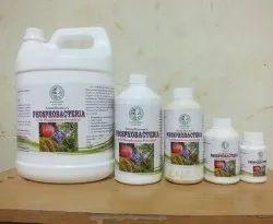 Phosphobacteria Liquid Bio Fertilizers