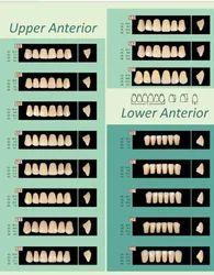 Prestorock 2 Layer Acrylic Teeth