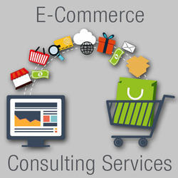 E Commerce Consulting Services
