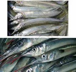 Fresh Kola Meen Fish