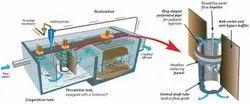 Liquid White Bioculture, Grade Standard: Technical Grade