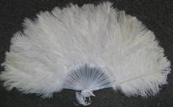 Beautiful Ostrich Feather 50/100 Pcs Color Selection