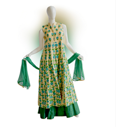 Green And Coffee Printed Designer Gown
