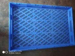 Plastic Tray (2 x 3 Feet)
