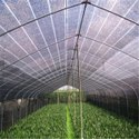 Greenhouse Roof Nets