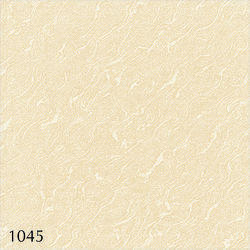 1045 - Decorative Porcelain Floor Tiles