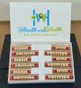 Synthetic Acrylic Teeth Set