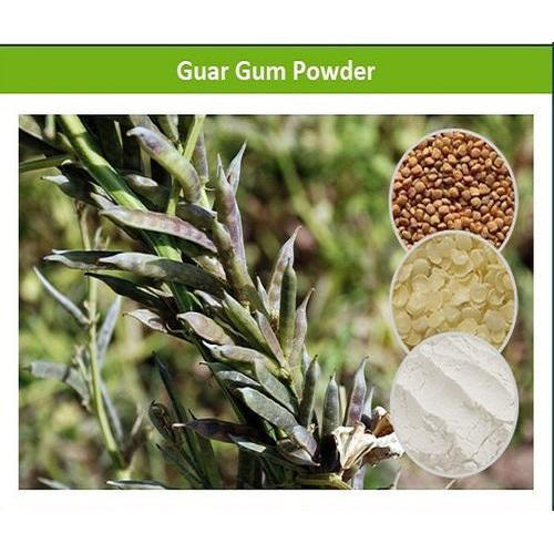 Microbiologically Tested High Quality Edible Guar Gum Powder
