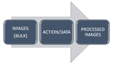Bulk Image Processing Services