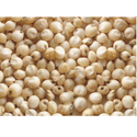 Sorghum Seeds, Packaging Type: Packet