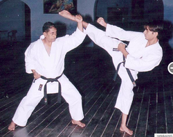 Karate Coaching Classes