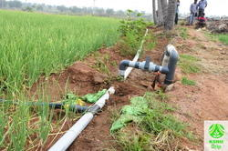 Spray Irrigation Kit - 500 Sqm