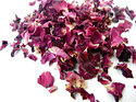 Dry Rose Patel