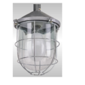 Industrial Lighting Downlight