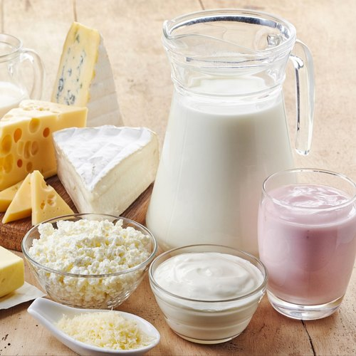 Dairy Enzymes - Lactase Enzyme Powder Manufacturer from Vadodara