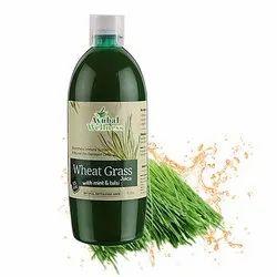 Wheat Grass Mint Tulsi (Reduce Cholesterol)