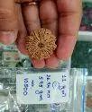 Nepal Rudraksh 8 To 12 Mukhi Collector