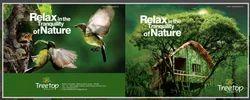 Designer Brochure Printing