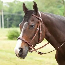 Western Leather Horse Bridle