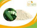 Spray Dried Vegetable Soup Powder Cucumber Powder