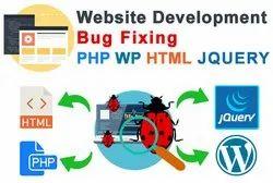 Website Bug Fixing