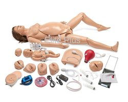 Gynae & Obstetric Models