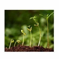 Herbal Agro Inputs