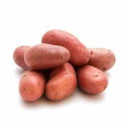 Lady Rosetta Potato, Packaging: 25 kg