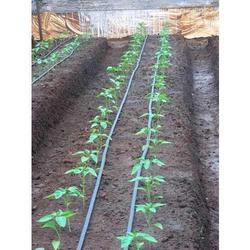 Thin Wall Drip Irrigation System