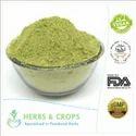 Eucalyptus Leaves Powder For Skin, Packaging Size: 25 Kg