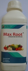 Max Root