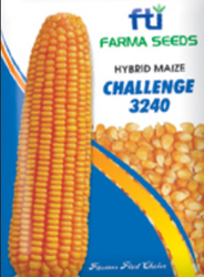 Challenge 3240 Hybrid Maize Seeds