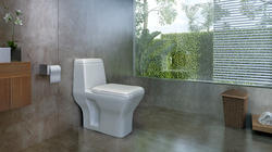 Indian Ceramic Sanitary Ware