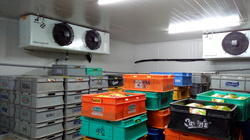 CURD COLD STORAGE ROOM