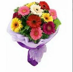 Fresh Mixed Gerbera Flowers