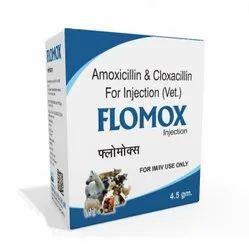 4.5 Gram Amoxicillin And Cloxacillin For Injection (Vet)