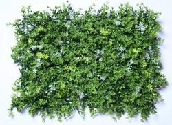 Green Vertical Garden Wall