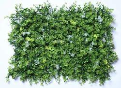 Green Vertical Garden Wall
