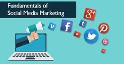 Social Media Promotion In Mp & Cg