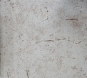 Divine Oak Silver Upholstery Fabrics