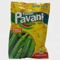 Tulasi Pavani (toh-522) Seed