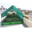 Organic Rooftop Farming