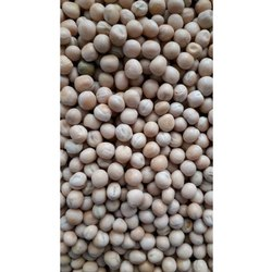 White Dried Peas, High in Protein