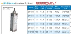 DNC Profile Cylinder Magnetic Double Acting